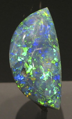 Black_Opal_Smithsonian2.jpg